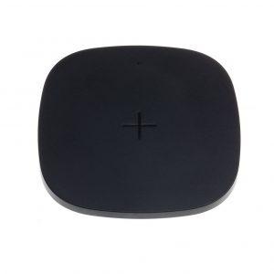 Зарядное устройство Whizzer T5